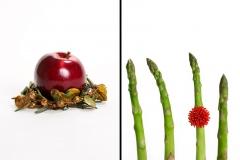 Jewelry & Vegetables 2
