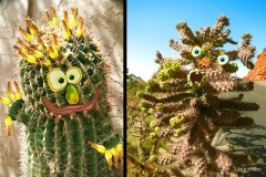 KViens_CactusMonsters1