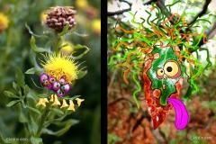 KViens_Tongue_Eyeball-Monsters