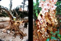 KViens_Tree-and-Leaf-Monsters