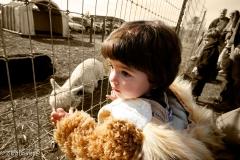 Sophia at the Farm